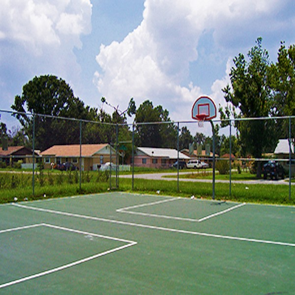 Tropical Neighborhood Park.jpg