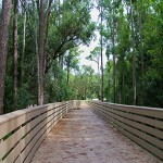 Shingle Creek Regional Park - Steffee Landing.jpg